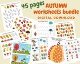 Autumn preschool worksheets, Fall Toddler activity book, Seasons Learning binder