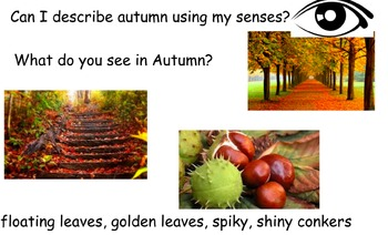 Autumn using the senses (poetry prep)