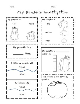 pumpkin science worksheets for kindergarten pumpkin best free printable worksheets. Black Bedroom Furniture Sets. Home Design Ideas