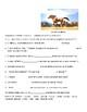 Avancemos 2 Unit 1 Lesson 2  Preguntas para Compañeros & Verb Fill-in  exercise