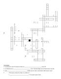 Spanish 1- Avancemos 6.2 Vocab Crossword (body parts and b