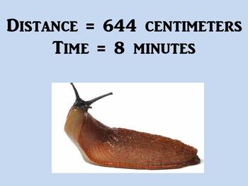 Average Speed Scavenger Hunt