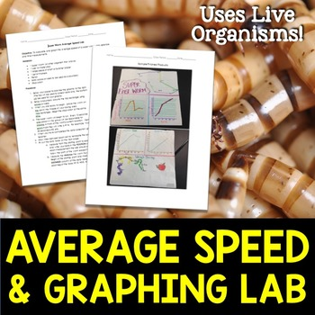 Average Speed and Graphing Lab with Superworms