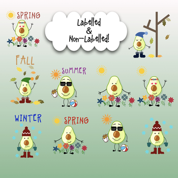 Avocado Seasons Clipart Great For Tpt Sellers And Classroom Decoration