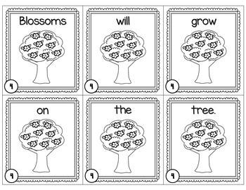 How to Grow an Apple Tree Scrambled Sentences