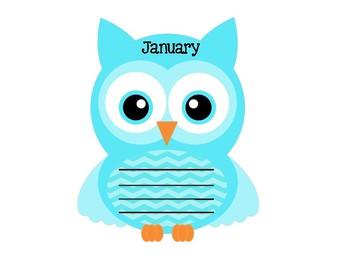 Awesome Birthday Owls