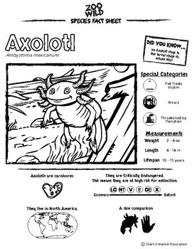Axolotl -- 10 Resources -- Coloring Pages, Reading & Activities