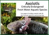 Axolotls - Critically Endangered Aquatic Species