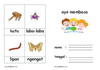 Ayo Membaca - Serangga (Let's Read - Insects)