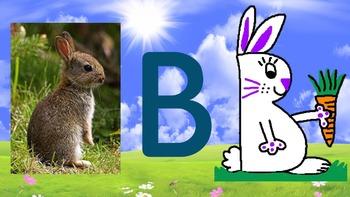 B Bunny Art Unit