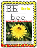 B Like in Bee (A Letter B Unit Using Real Photos!)