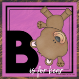 B is for Bears Themed Unit-Preschool Lesson Plans and Activities (one week)