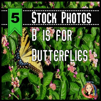 B is for Butterfly - 5 Stock Photos for Educational Resour