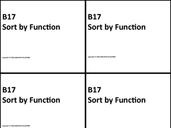 B17 ABLLS- R ALIGNED sort by function