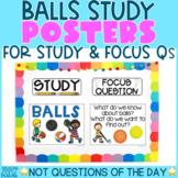 Creative Curriculum Teaching Strategies GOLD   BALLS STUDY