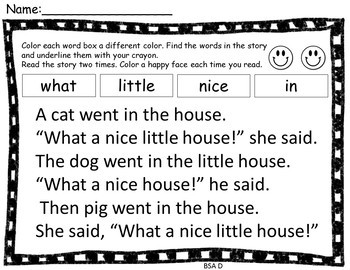 BAS Level D Sight Word Practice With Comprehension