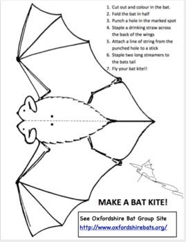 Bat Math,  Bat Activities,  Bat Projects  for 4th Grade