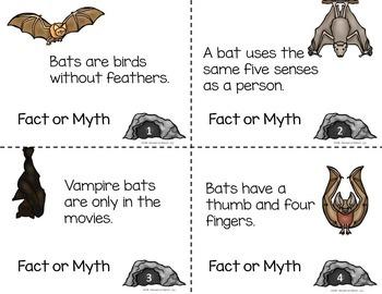 BATS Activities Fact or Myth