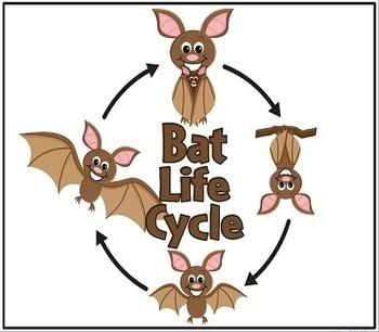 BATS Informational Interactive Read Aloud with Lesson Plans and Activities