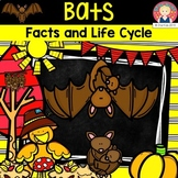 BATS Fun Facts and Life Cycle for Kindergarten and First Grade