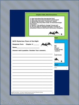 BATS Mysterious Flyers of the Night Book Unit