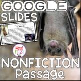 BATS DIGITAL Close Reading Passages Questions Writing for Google Classroom