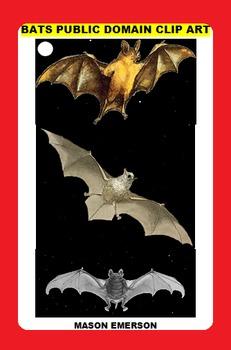BATS PUBLIC DOMAIN CLIP ART (75 images, A Halloween Favorite)