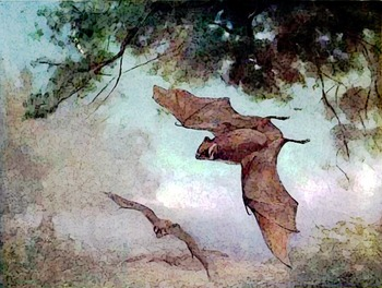 BATS PUBLIC DOMAIN CLIP ART (75 images, A Halloween Favorite)
