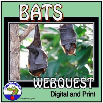 BATS Webquest