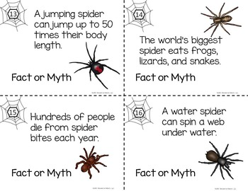 BATS and SPIDERS - Fact or Myth Task Cards Bundle