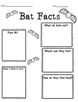 BATS,BATS,BATS!!!