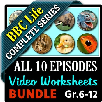 BBC Life - All 10 Episodes - Video Questions Worksheets Bundle {Editable}