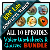 BBC Life - All 10 Episodes - Video Worksheets & Video Quizzes Bundle {Editable}