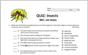 BBC Life - All 10 Episodes - Video Quizzes Bundle {Editable}
