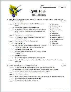 BBC Life - BIRDS - Video Quiz {Editable}