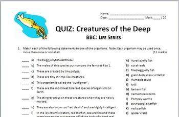 BBC Life - CREATURES OF THE DEEP - Video Quiz {Editable}
