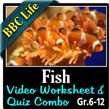BBC Life - FISH - Video Worksheet & Quiz Combo {Editable}