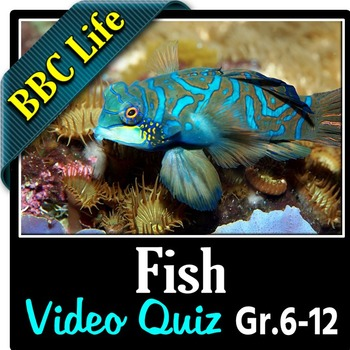 BBC Life - FISH - Video Quiz {Editable}