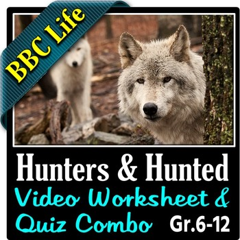 BBC Life - HUNTERS AND HUNTED - Video Worksheet & Quiz Combo {Editable}