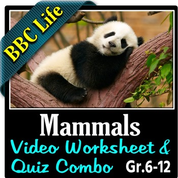 BBC Life - MAMMALS - Video Worksheet & Quiz Combo {Editable}