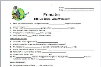 BBC Life - PRIMATES - Video Questions Worksheet {Editable}