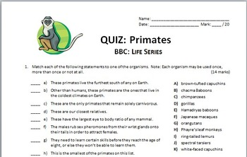 BBC Life - PRIMATES - Video Quiz {Editable}