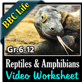 BBC Life - REPTILES AND AMPHIBIANS - Video Worksheet {Editable}