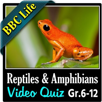 BBC Life - REPTILES AND AMPHIBIANS - Video Quiz {Editable}