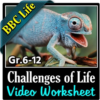 BBC Life - THE CHALLENGES OF LIFE - Video Questions Worksheet {Editable}
