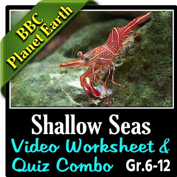 Planet Earth Shallow Seas Video Questions Quiz Combo Editable