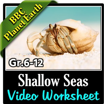 Planet Earth Shallow Seas Video Questions Worksheet Editable