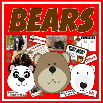 BEARS TEACHING RESOURCES SCIENCE ANIMALS EYFS KS 1-2 ROLE
