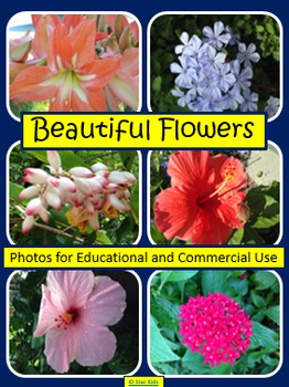 BEAUTIFUL FLOWERS {PHOTOS FOR EDUCATIONAL AND COMMERCIAL USE}