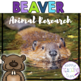BEAVER - nonfiction animal research